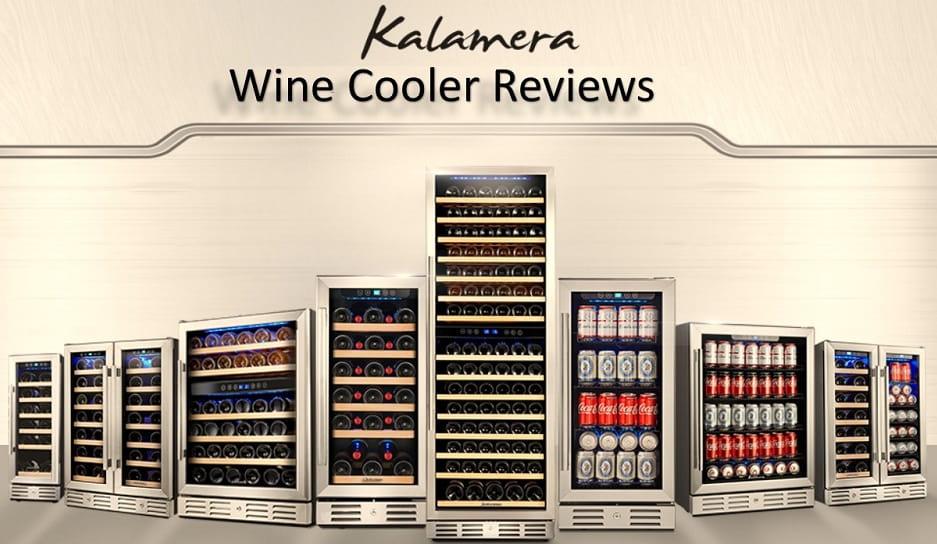 Wine Cooler vs Mini Fridge